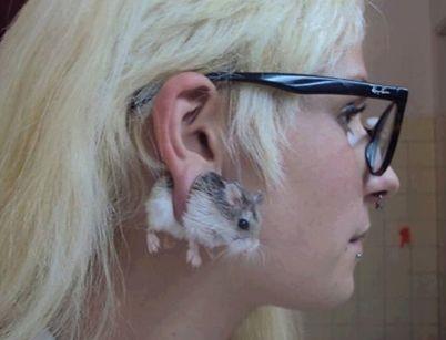 Este accesorio tiene dos usos: Arete y Limpia oreja