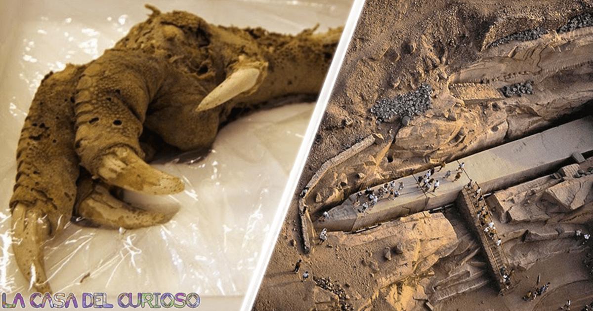 Los descubrimientos arqueológicos más extraños del mundo