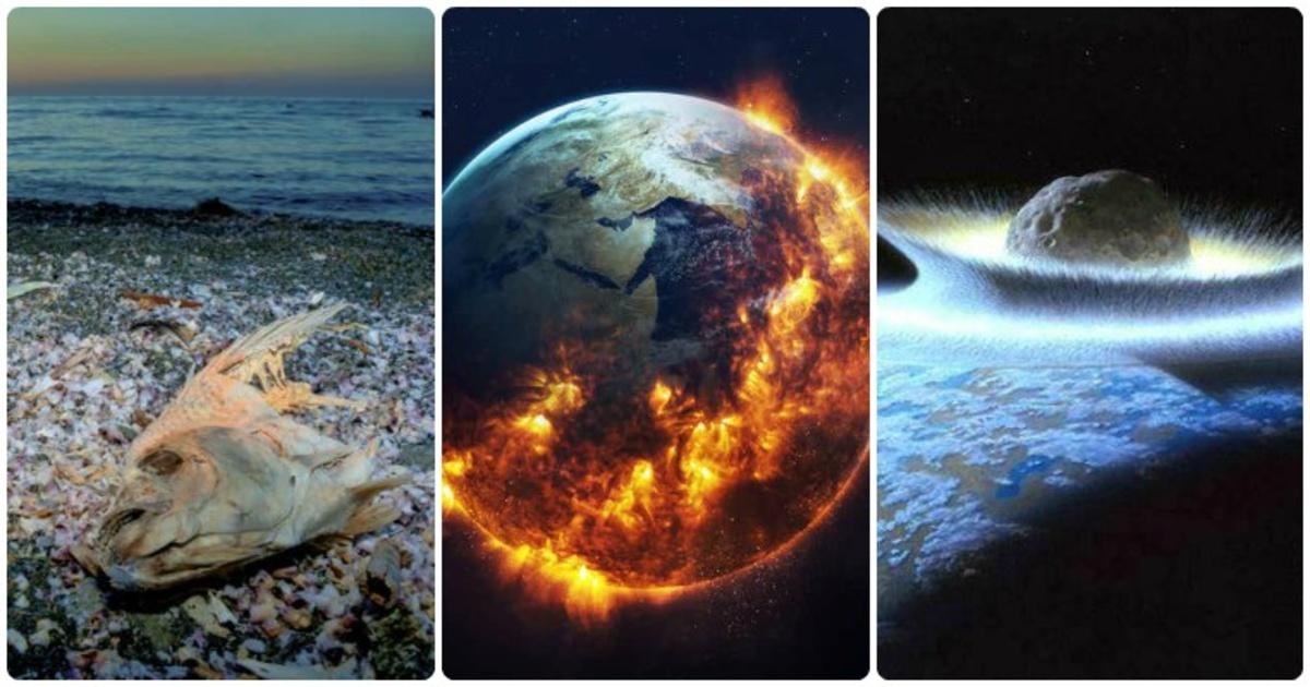 Formas realistas en que la humanidad podría ser destruída