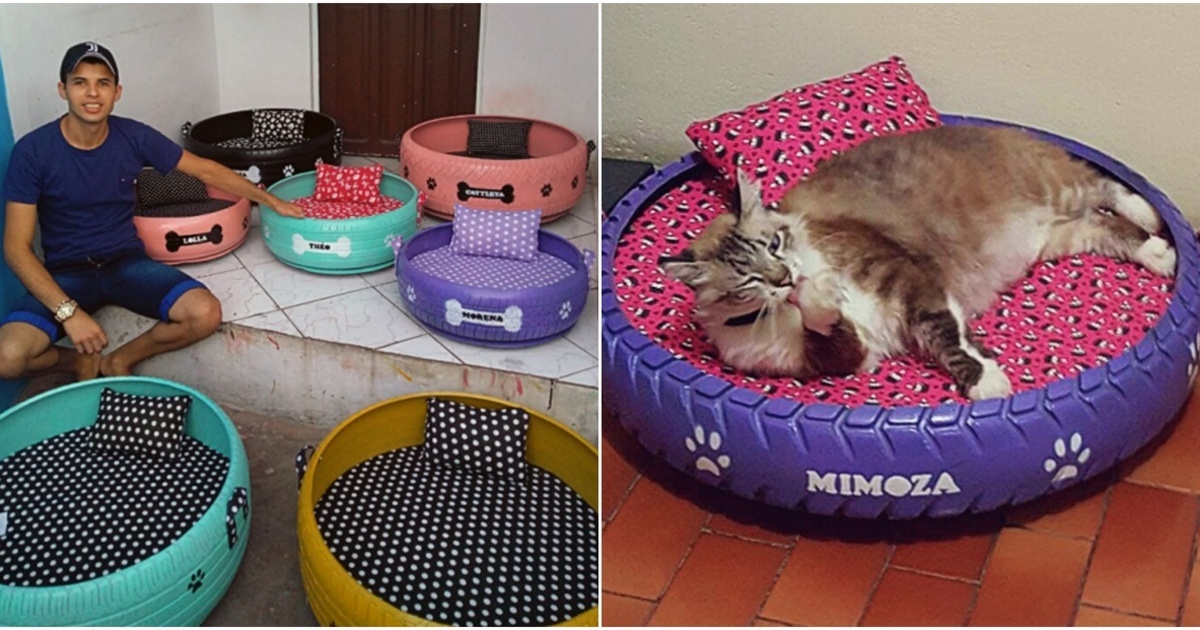 Joven transforma viejos neumáticos en camas para animales, ¡Que creativo!