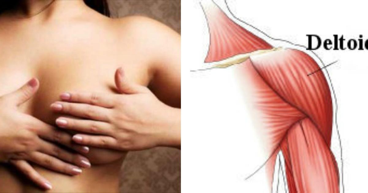 5 Tips para aumentar el tamaño de tus senos de forma natural. ¡Funciona!