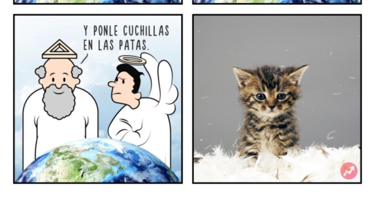 13 Divertidas ilustraciones que tratan sobre la creación de los animales