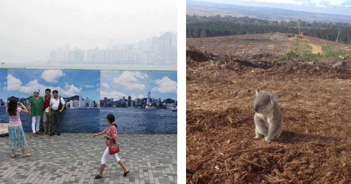 Mira como estamos acabando con nuestro planeta. Fuertes imágenes.