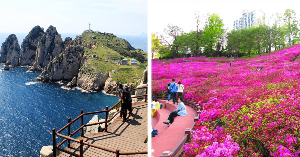 10 Fotografías que harán querer viajar a Corea del Sur.