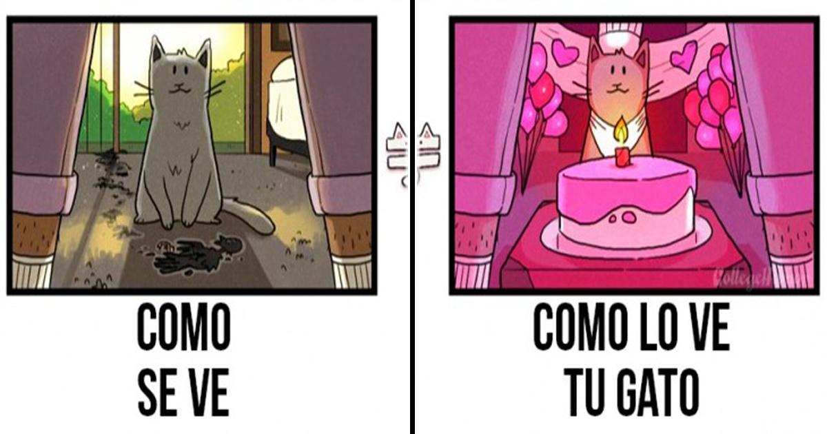 Estas 6 ilustraciones muestran cómo los gatos ven el mundo.