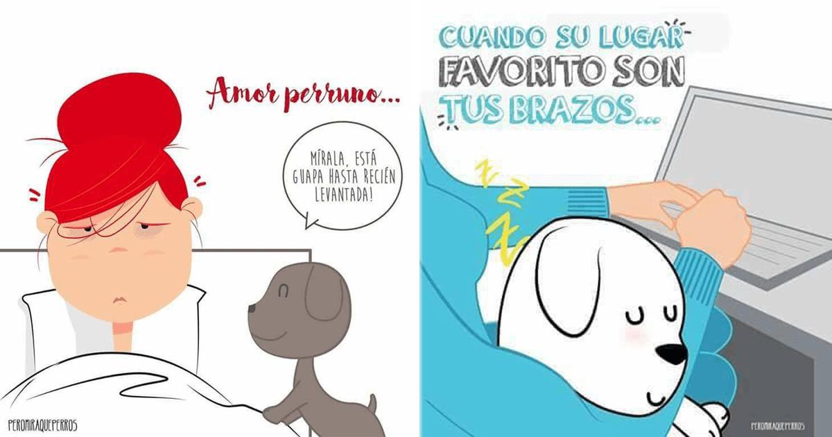 9 Momentos graciosos y tiernos que todos aman de sus perros.