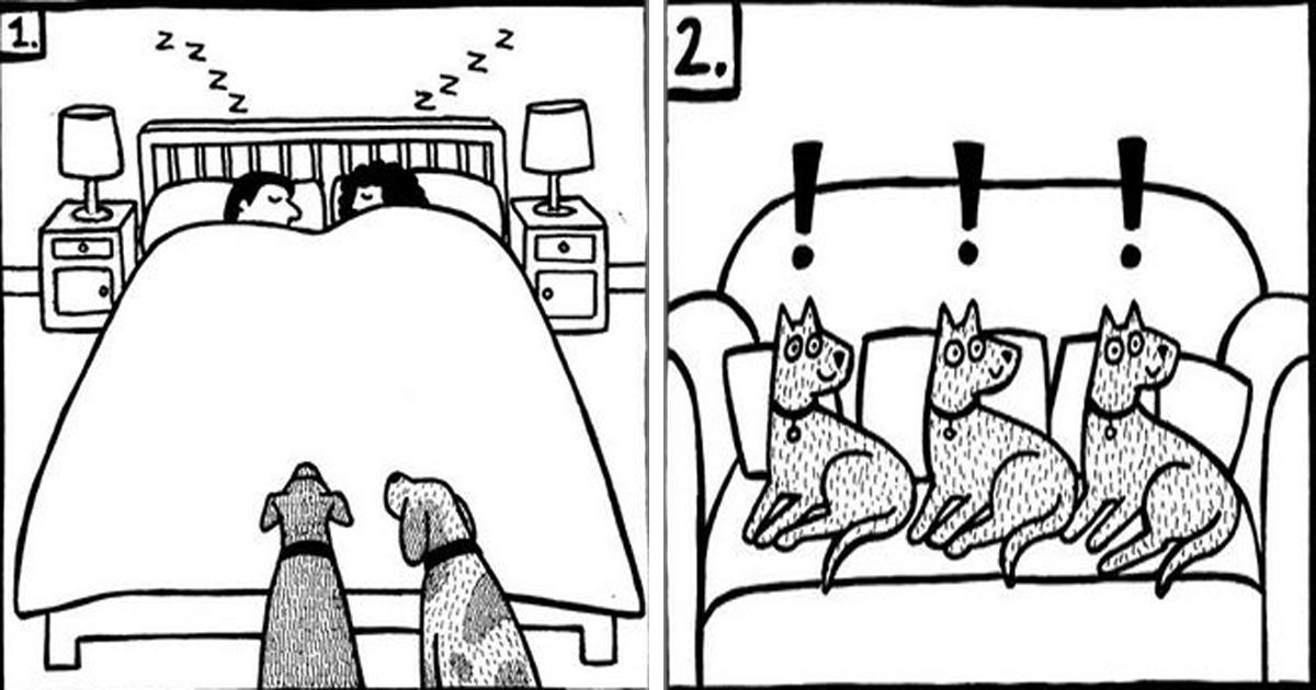 Graciosas ilustraciones de Off The Leash de lo que es la vida de un dueño de perros.