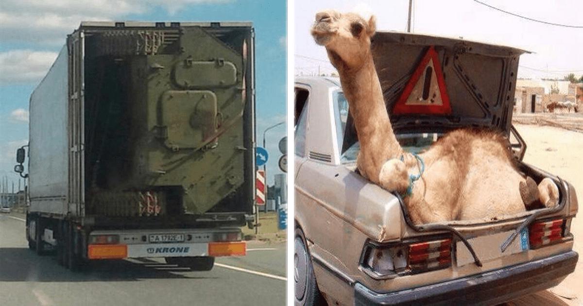 12 Personas que transportaron cosas de la manera más extraña e inadecuada.