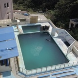 Solitary dolphin in abandoned aquarium in Japan