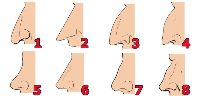 La forma de tu nariz está relacionada con intelecto y forma de ser